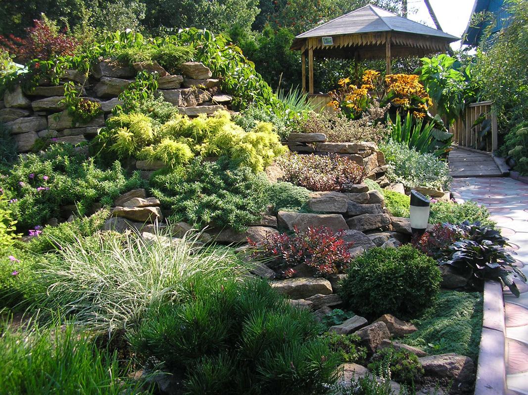 Озеленение территории и ландшафтные работы