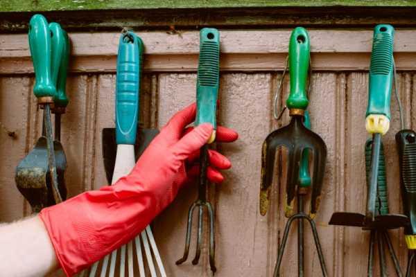 Что стоит учесть при выборе садовых инструментов?
